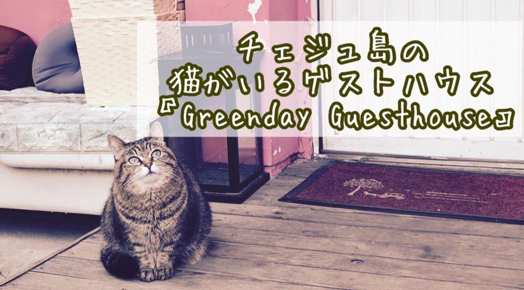 猫がいるゲストハウス「Greenday Guesthouse」