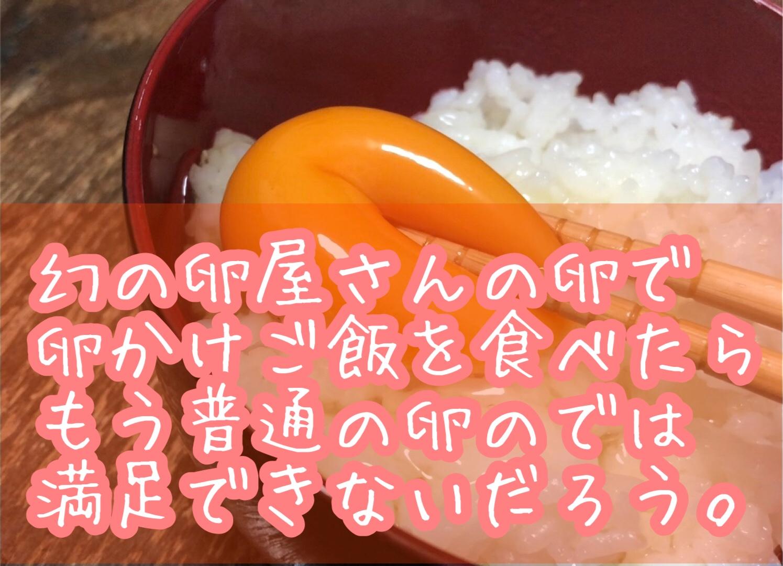 幻の卵屋さんの卵で卵かけご飯を作った話