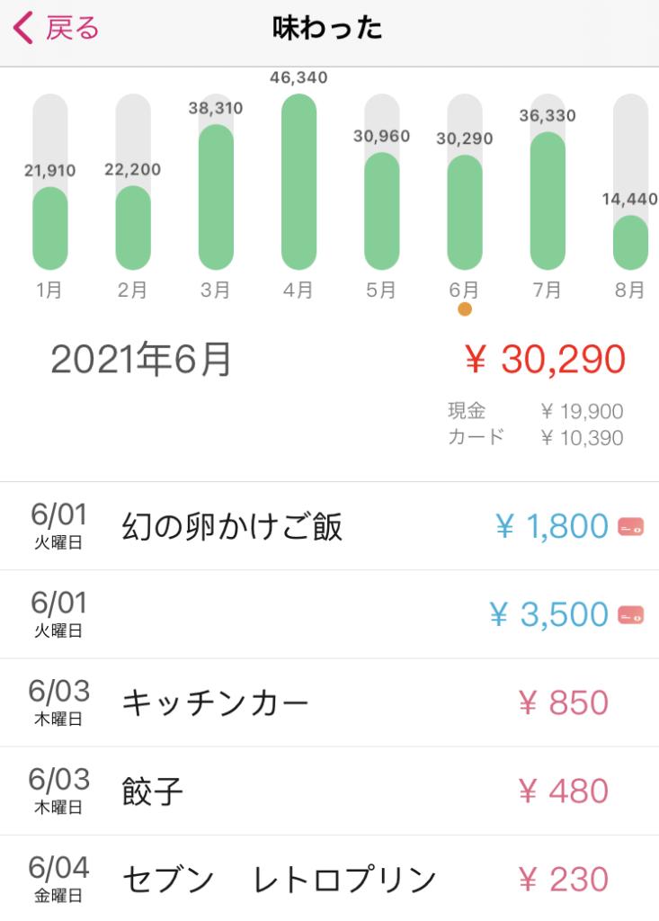 レベルアップ家計簿明細